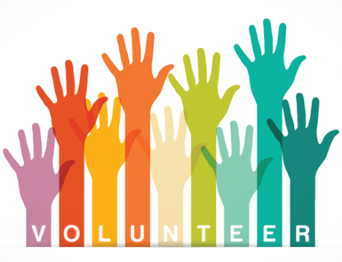 Volunteer/ Voluntarios